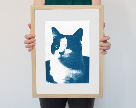 Cat Portrait, Cyanotype Print, Funny Art Print, Cat Lover Gift, Feline, Animal Lover Gift, Cat Poster, Black and White Cat, Cat Obsession