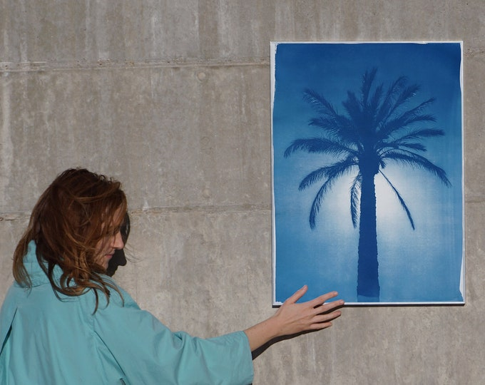 Cairo Citadel Palm / Cyanotype on Watercolor Paper / 50x70cm / Limited Edition