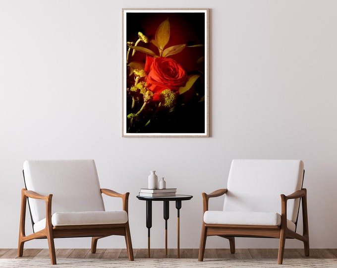 Red Rose in Vintage Light / Limited Edition Giclée Print