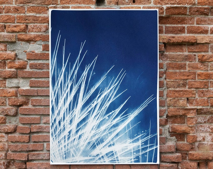 Nighttime Fireworks Flaring / Cyanotype on Watercolor Paper / Limited Edition