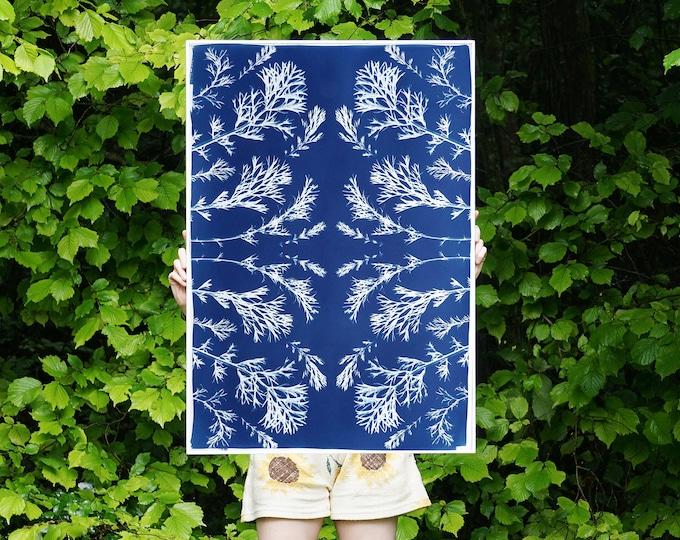 Vintage Pressed Flowers Nº3 / Handmade Cyanotype on Paper / Limited Edition
