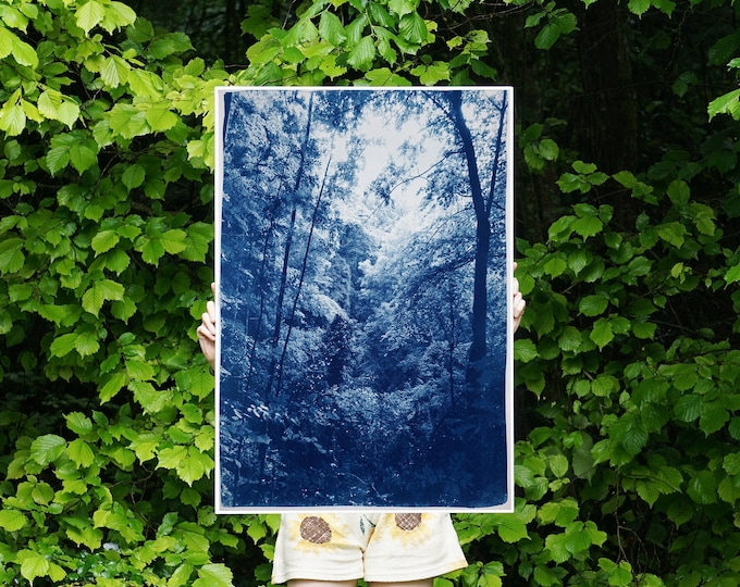 Soft Light in the Woods / Handmade Cyanotype on Watercolor Paper / Limited Edition