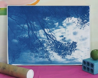 Malibu Pine Sea View / 50x70cm / Cyanotype on Watercolor Paper / Limited Edition