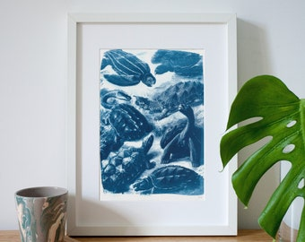 Ernst Haeckel Cyanotype Print of a Botanical Scene with different types of Turtles, Vintage Drawing, Best Decor Print, Botany Art, Art print