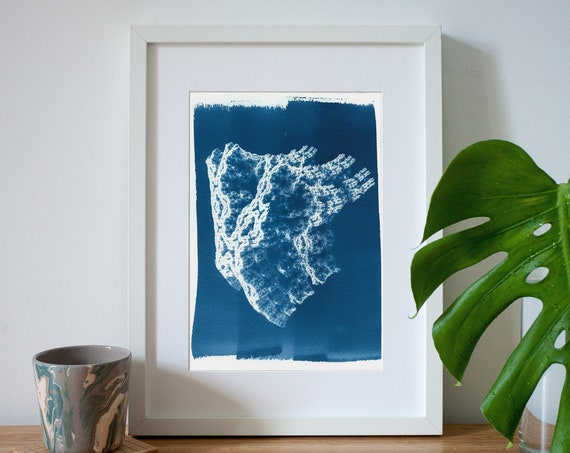 Fractal 3d Coral Handmade Cyanotype Print on Watercolor Paper, Coral Prints, Trending 2019, 3d Render, Coral Reef, Organic Art