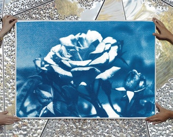 Blue and White Rose / Cyanotype on Watercolor Paper / Limited Edition