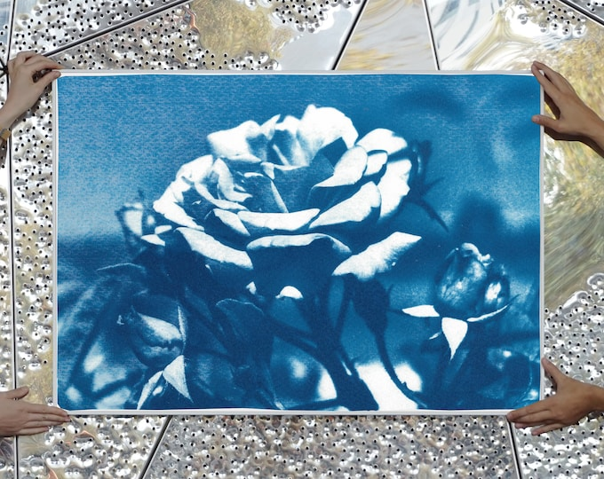 Featured listing image: Blue and White Rose / Cyanotype on Watercolor Paper / Limited Edition