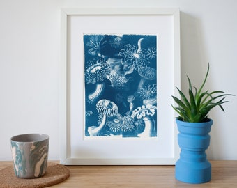 Beautiful Fungus Drawing Scene, Limited Edition Cyanotype Print on Watercolor Paper