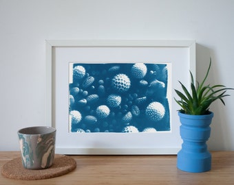 Handmade Cyanotype Print showing a Microscopic Composition on Watercolor Paper, Limited Edition