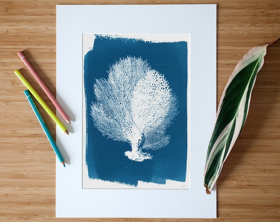 Blue Coral Tree Print, Handmade Cyanotype Print on Watercolor Pape, Limited Edition
