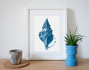 Nautical Decor Sea Shell Drawing, Handmade Cyanotype Print on Watercolor Paper, Limited Edition
