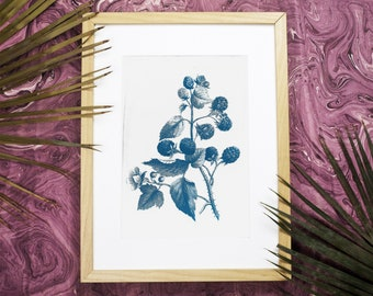 Vintage Wild Berries Botanical Drawing