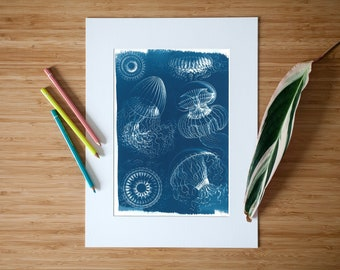 Handmade Jellyfish Cyanotype Print Botanical Drawing, Ernst Haeckel, Jellyfish Art, Nautical Art, Animal Print, Design Decor, 2019 Trend