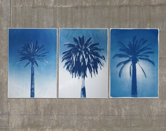 Desert Palm Trio / Handmade Cyanotype Print on Watercolor Paper / Limited Edition of 20