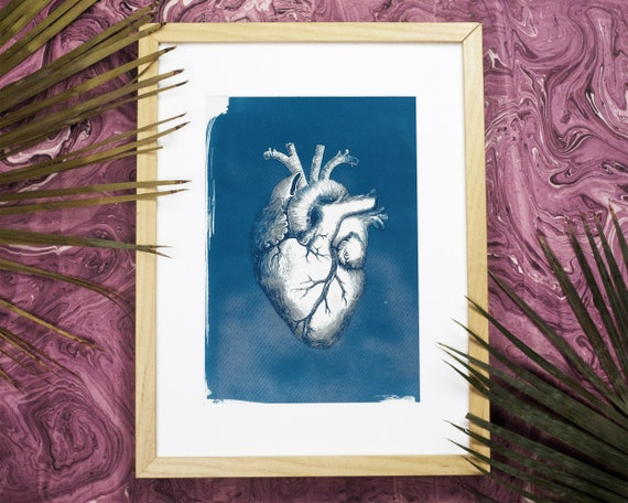 Heart Anatomy Vintage Illustration, Cyanotype, Doctor Gift, Heart, Medical Art, Anatomical Heart, Love Gift, Gift for Her, Gothic Home Decor