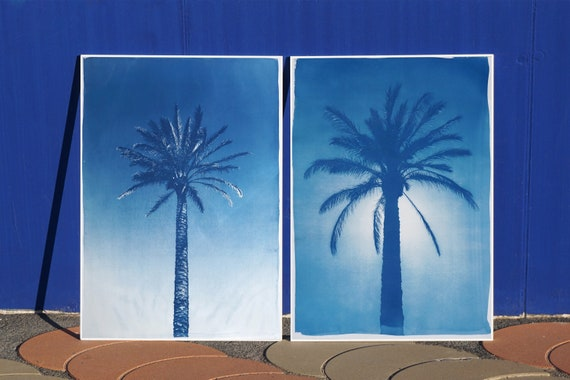 Duo of Egyptian Palms / Handprinted  Cyanotype Print on Watercolor Paper / Limited Edition of 20