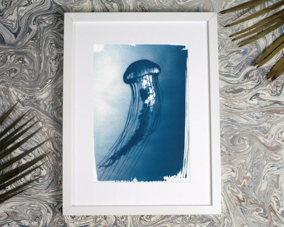 Jellyfish Medusa Floating in the Ocean, Cyanotype Print, A4 size, Marine Life Print, Girlfriend gift, Beach house, Sea Horse, Sealife