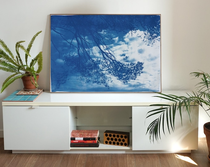 Malibu Pine Sea View / Cyanotype on Watercolor Paper/ Limited Edition of 50