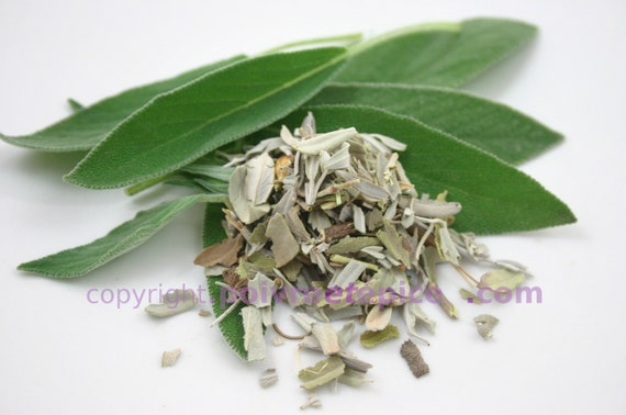 Sage OFFICINALE, authority, SAGE, flake