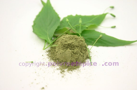 MOLOKHIA leaf, dehydrated, powder