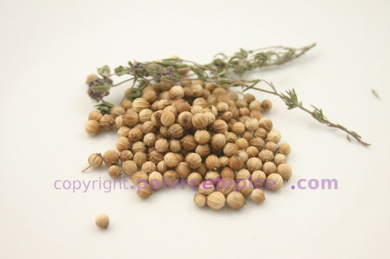 CORIANDER, seed, whole