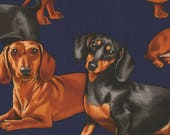 Timeless Treasures - Dogs - Dachshunds - Cotton Fabric by the Yard or Select Length C3190-NVY photo