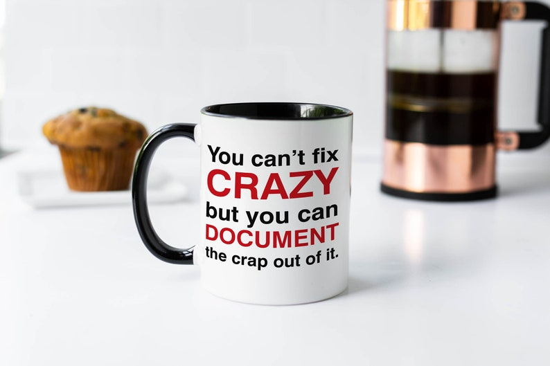 You Can't Fix Crazy But You Can Document The Crap Out Of image 0