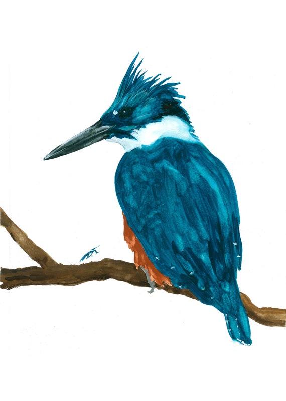 Kingfisher Bird on Branch Fine Art Print 5 x 7 Inches