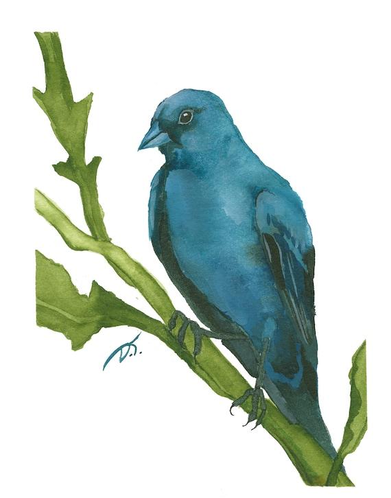 Indigo Bunting Bird on Branch Fine Art Print 5 x 7 Inches