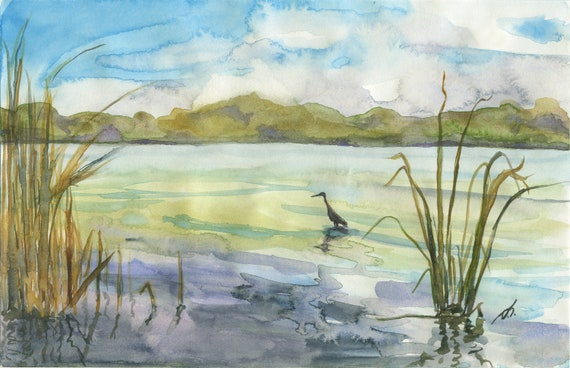 Great Blue Heron Near the Shore Fine Art Print 5 1/3 Inches x 8 Inches