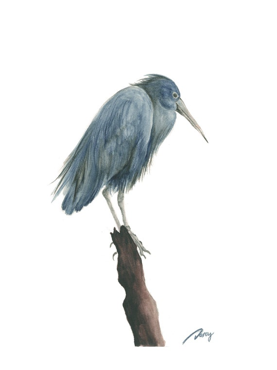 Heron on Branch Fine Art Print 5 x 7 Inches