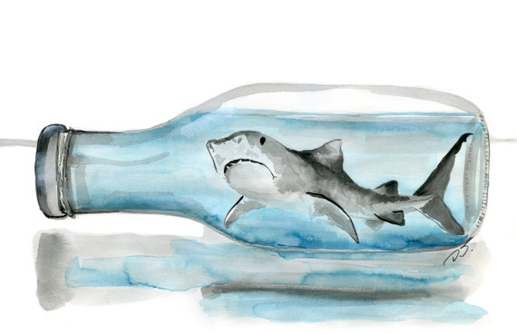 Shark in a Bottle Fine Art Print 7 1/2 x 10 Inches