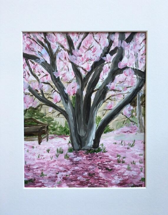 Springtime Magnolia in Washington DC