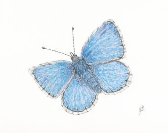 Blue Butterfly Print, Butterfly Watercolor Print, Blue Butterfly Wall Decor, Blue Butterfly Painting