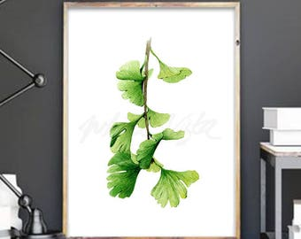 Botanical leaves watercolor art prints, ginkgo leaves print, nature illustration leaves home decor, ginkgo plants, green leaves painting 2