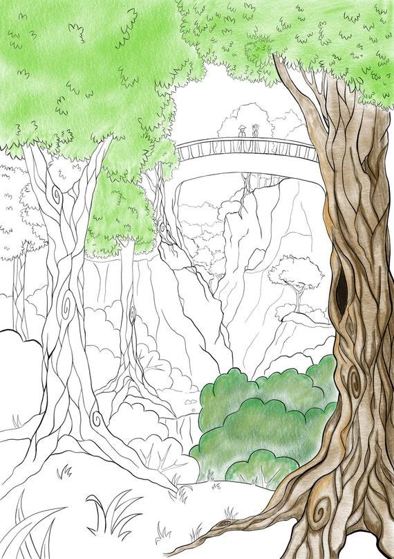 Landschaft-Malvorlagen für Erwachsene und Kinder Wald | Etsy