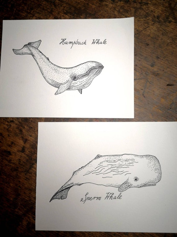 New Hand  drawn black and white original whale picture drawing