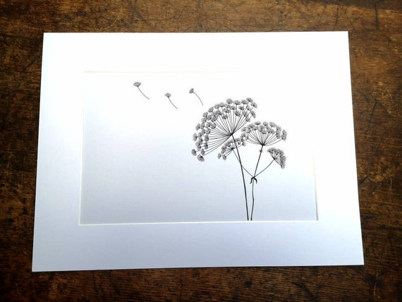 Hand drawn black and white original floral botanical picture drawing