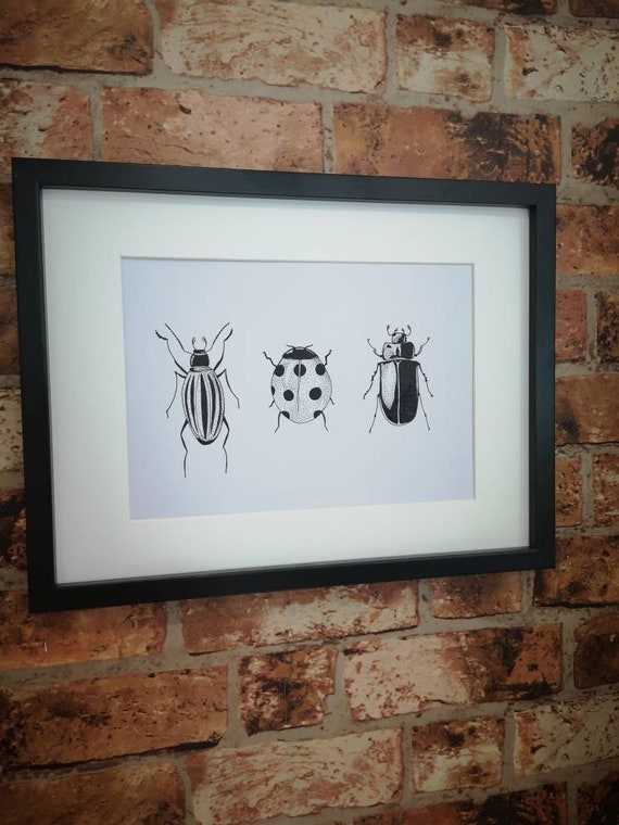 Hand drawn original bug insect  picture