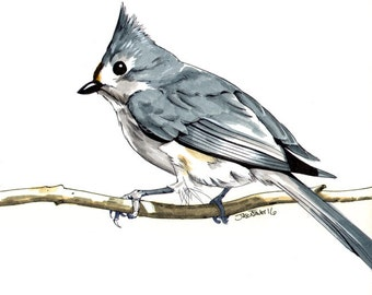 Titmouse Painting // Acrylic Print // Acrylic Painting // boyfriend gift // coworker gift // best friend gift