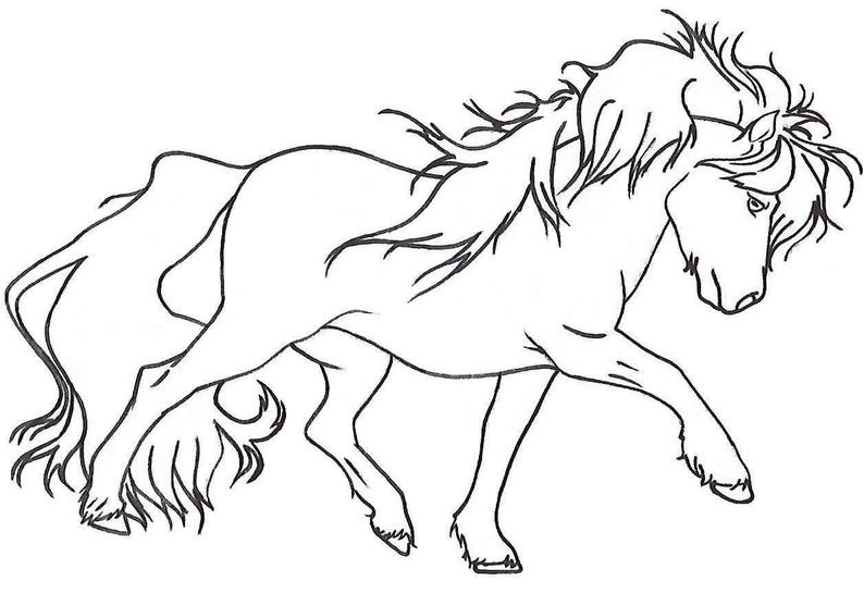 Miniature Horse Pony Chromatic Creations Free Style