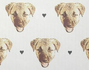 Paper Envelope SET / DOG
