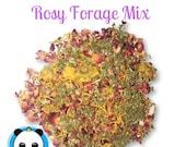 Healthy Rosy Forage Mix- w Raspberry Leaves, Lemon Balm and Calendula-Chinchillas, Degus, Rabbits Guinea Pigs
