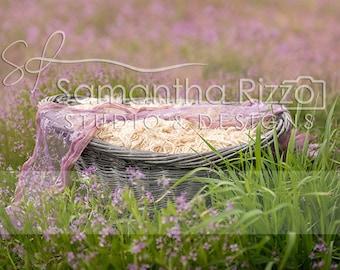 Flower Digital Newborn Background - Outdoor Photography Wildflower Basket (Set of 2)