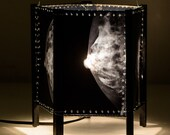 Table Lamp anatomy mammography breast x-ray, doctor radiographer gift, special effects, medicine lampshade, modern and antique home, OOAK