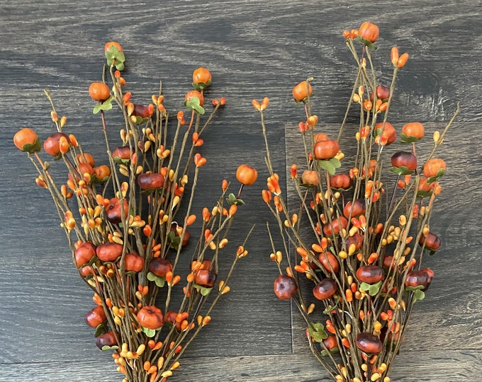 Orange Pumpkin, Green Leaves, Pip Berry Pick, Fall, Thanksgiving