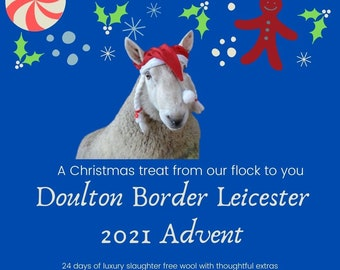 Luxury  2021 Advent Calendar from the Doulton Flock