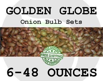 2018 GOLDEN GLOBE Onion Bulb Sets  - Organically Grown Seed Onions, Non-GMO - Free Shipping!