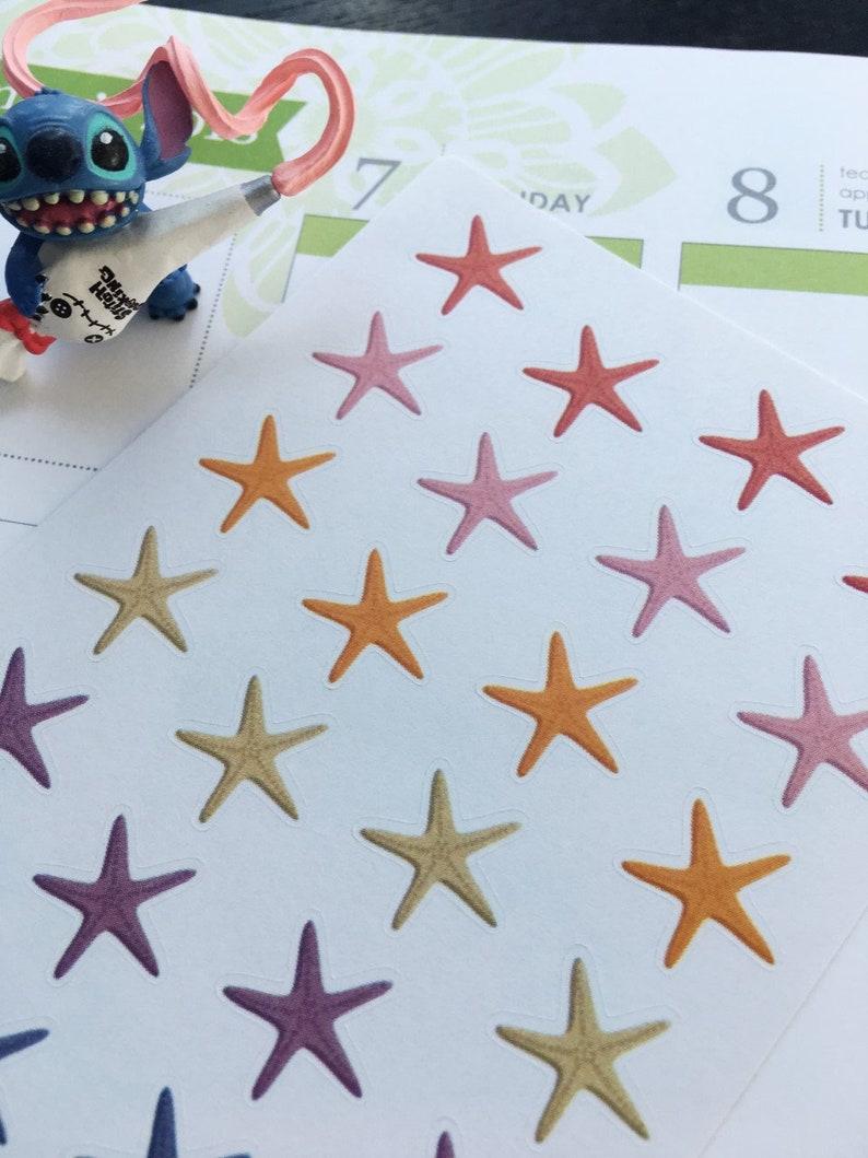 S173-Star Starfish,Marine Invertebrates,Star-Shaped Echinoderms planner stickers:Planner Stickers|Erin Condren,Limelife,Plum Paper,Filofax