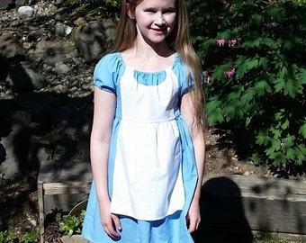 Alice in Wonderland Dress Closeout - Alice Inspired Dress - Tea Party Dress - Alice Disneybound - Girls Alice in Wonderland Costume